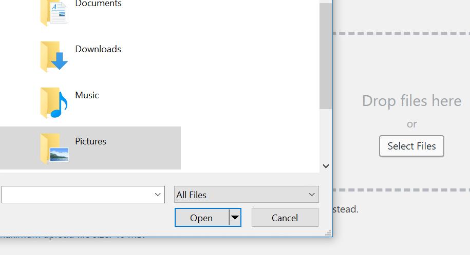 Screenshot of file opener