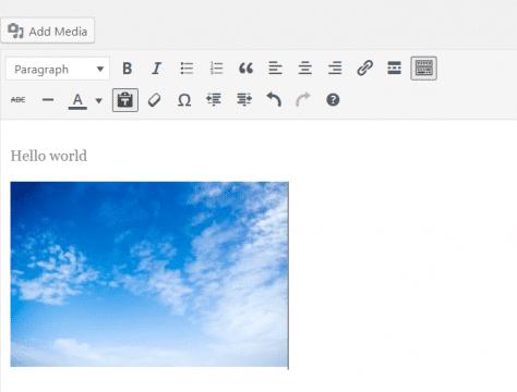 WordPress classic editor similar