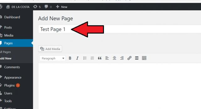 WordPress classic editor title