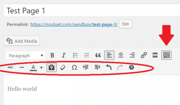 WordPress classic editor paragraph tool bar row
