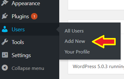 WordPress new user