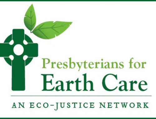 CLIENT SPOTLIGHT: PRESBYTERIANS FOR EARTH CARE
